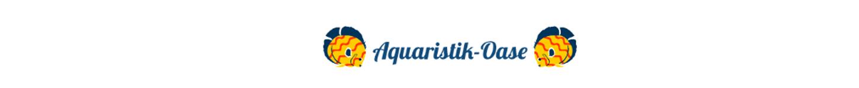 Aquaristikoase Wilkau-Hasslau